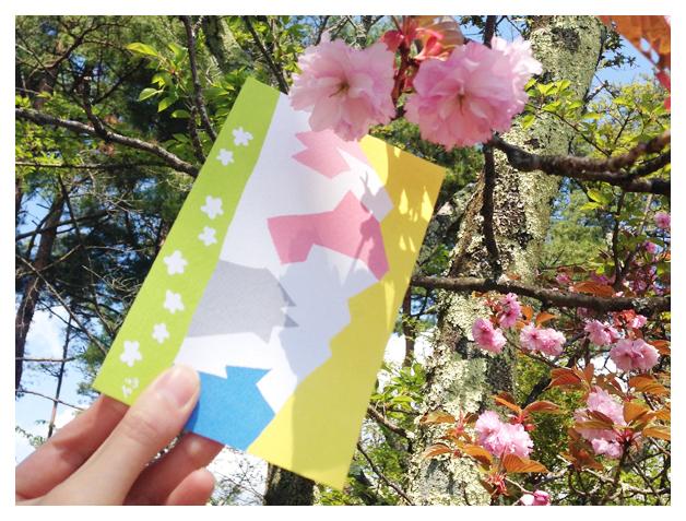 森の色合わせカード(四角友里×シェアリングネイチャー協会)